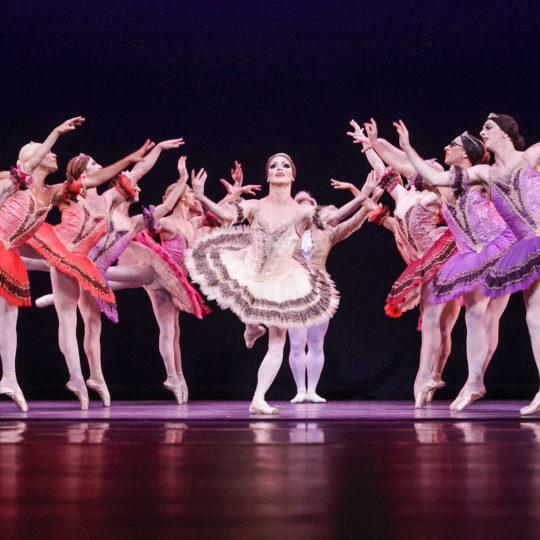 Eventfotografie Köln, Les Ballets Trockadero de Monte Carlo